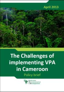 VPAimplementationchallenges_Cameroon